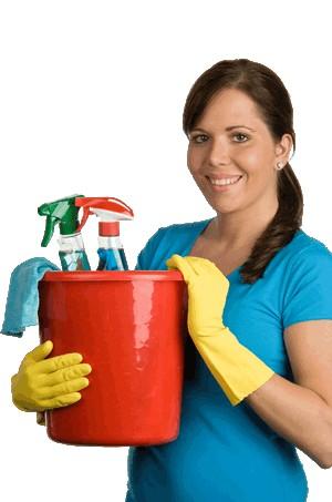 recherche femme de ménage aulnay sous bois