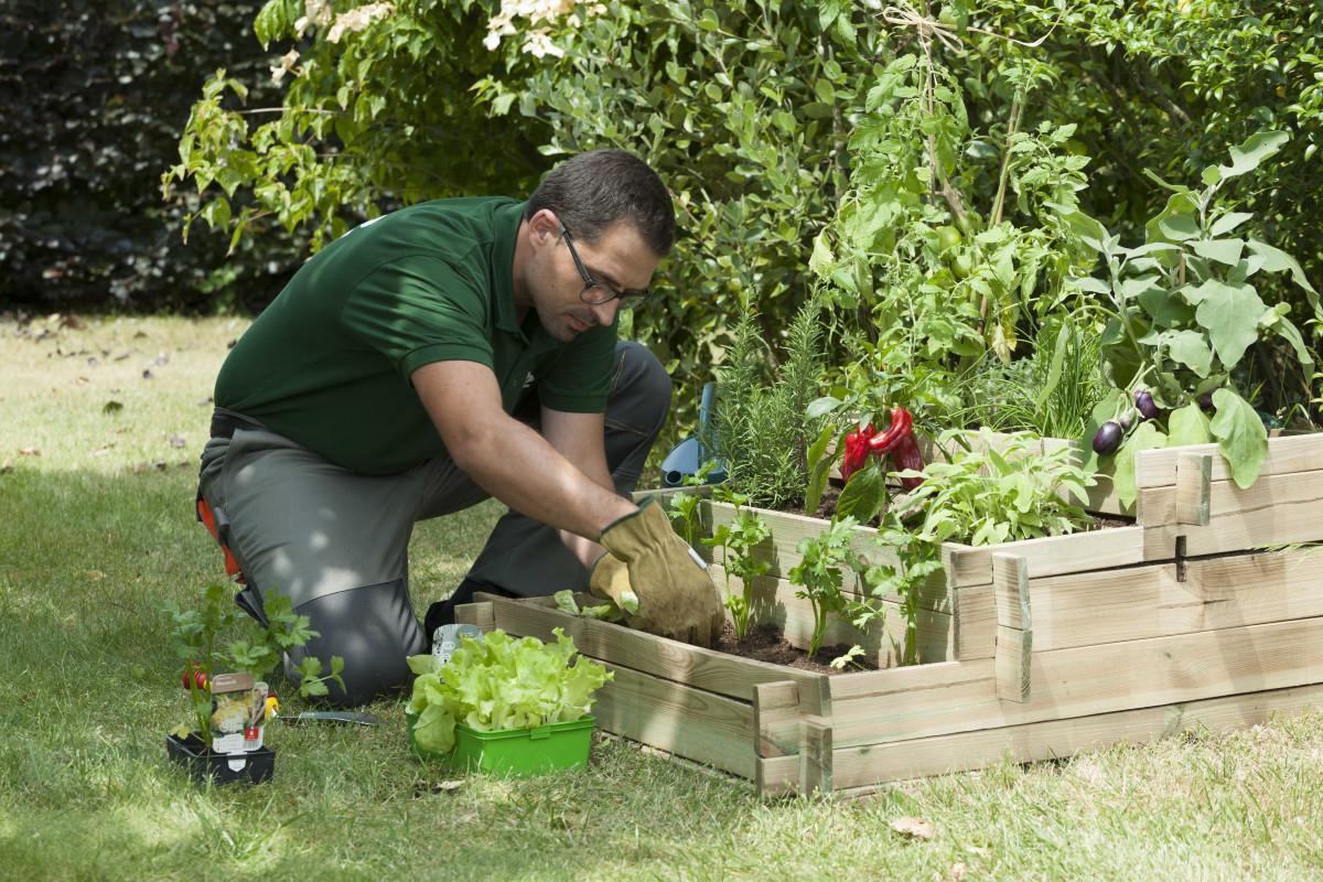 Jardinage à domicile - Lille - Jardinage - #9